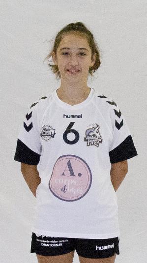 Pouzauges Vendée Handball (PVHB)